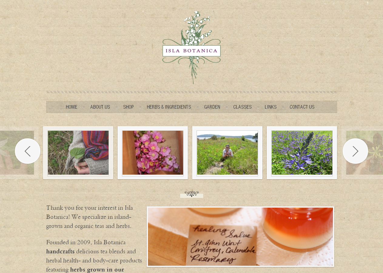 Home - Tif & Gif Creative LLC | Web Design | Marketing | Graphic ...